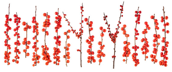 christmas branch with red berries isolated on white background Fototapete