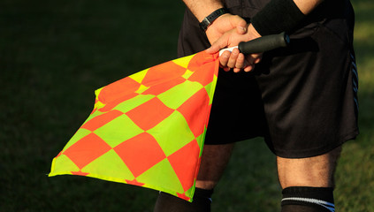 Soccer assistant referee on the field holding the flag.