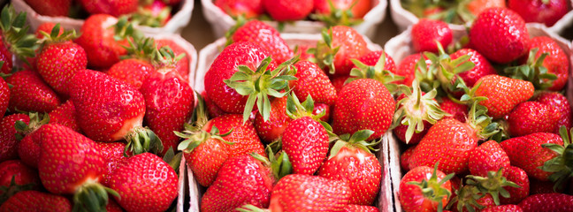 Natural strawberries in boxes at a farmers market