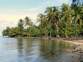 Tahiti. Naturaleza y flora en Polinesia francesa (Oceania)