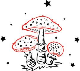 Fliegenpilze mit Sternen, Pilze, Pilzsammler