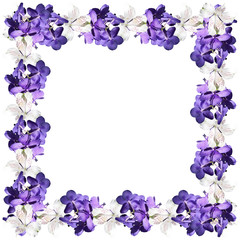 Beautiful floral background of white alstroemerias and orchids vanda