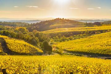 Foto op Plexiglas Panoramafoto s Autumn vineyards in Tuscany, Chianti, Italy