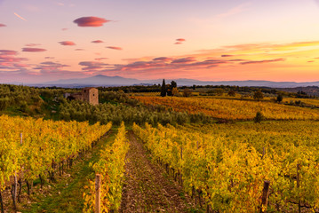 Wall Murals Cuban Red Panoramic view of the Chianti region in Tuscany, Italy. with an abandoned farmhouse. Autumn season.