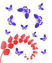 бабочки с растением