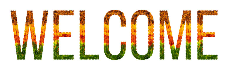 word welcome written with leaves white isolated background, banner for printing, creative illustration of colored leaves.