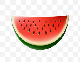 Cute Watermelon Icon on Transparent Background . Isolated Vector Illustration