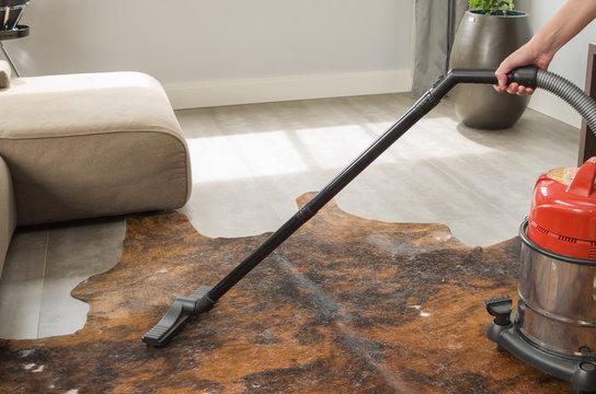 Ótimo conceito de faxina caseira, limpeza da casa,  aspirando os pelos de cachorro do chão