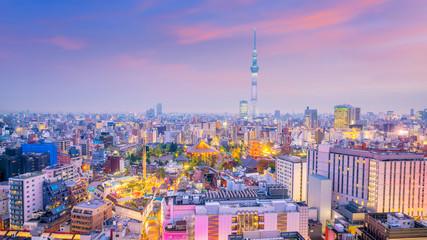 Panorama shot of Tokyo city skyline