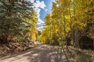Dirt road through Autumn