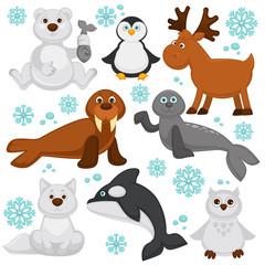 Polar animals and arctic fish cartoon characters.