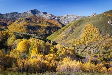 Valle y montañas en otoño. Espacio Natural Sierra de Los Ancares.