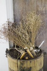 Roasted coffee bean in wood bucket