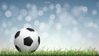 Soccer football ball on green grass field with light blurred bokeh background. Vector illustration.