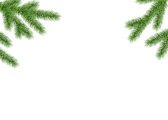 Xmas background with fir  branch.