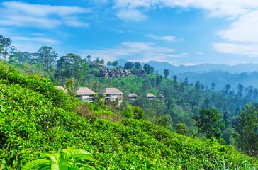Ecotourism in Ella