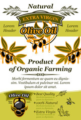 Olive oil banner of natural organic food design