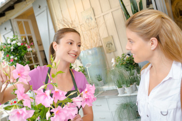 Florist and a customer