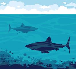 Sharks, coral, sea, sky.
