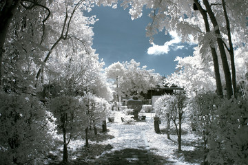 The park with IR