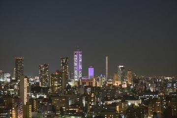 日本の東京都市景観「池袋の高層ビル群などを望む」