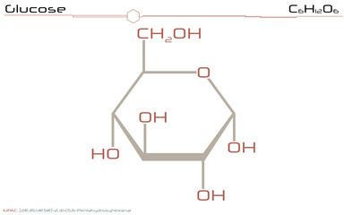 Large and detailed illustration of the molecule of Glucose