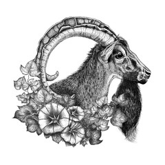 Hand drawn goat and wreath of flowers.For prints.Black and white liner drawn.