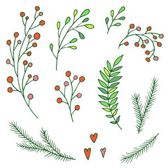 Set of vector Christmas decoration elements. Hand drawn branches, berries and leaves