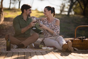 Couple toasting glasses of wine during safari vacation