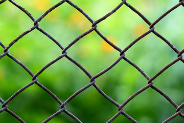 Close-up view of a chain link fence with mowed green field blurred into background.