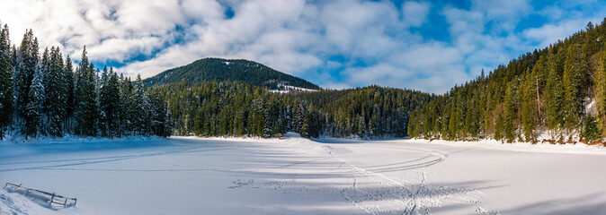 panorama of ice covered Synevyr lake in winter. Gorgeous location in forested Carpathian mountains