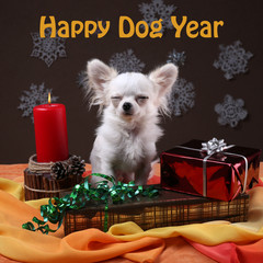 Happy dog year - white dog dreams on gift boxes near candle on red and yellow table with blur snowflakes on dark background - symbol of 2018 new year