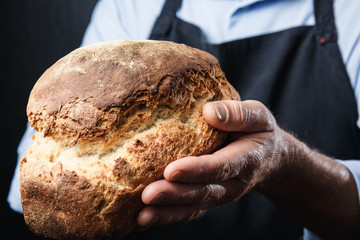 man with fresh bread in his hands, baker in apron and shirt giving hot bread