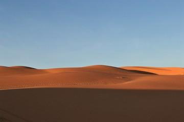 rally travel through the desert