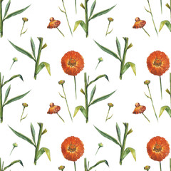 Red daisy on white background. Seamless watercolor pattern