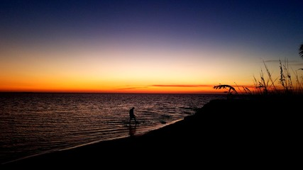 Ocean shoreline at sunset