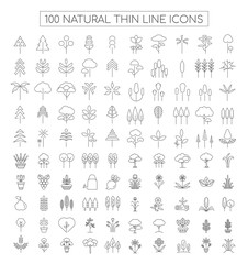 Natural Thin Line Icons