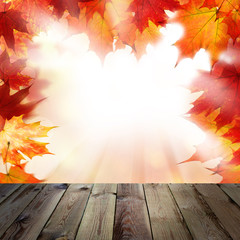 Background with Orange Autumn Maple Leaves and Empty Grunge Wooden Board. Outdoors Template Mock up for Display of Product