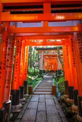 Photo sur Aluminium Kyoto Fushimi Inari Taisha torii, Kyoto, Japan