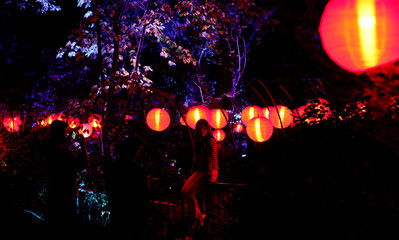 "A visitor poses for a photo in the installation ""Garden of Good Fortune"" which is part of the exhibit ""Enchanted: Forest of Light"" at Descanso Gardens in La Canada Flintridge"