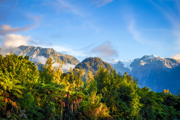 Franz Josef glacier and rain forest, New Zealand