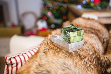 Gifts kept on sofa at home