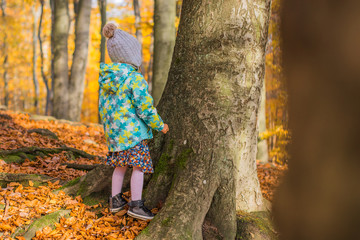 Girl walking in a colourful forest