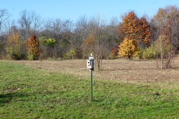 The birdhouse in a field with the autumn trees of the wooded area.