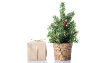 Christmas tree with gift isolated on white