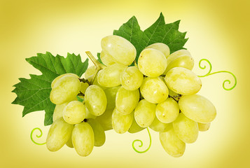 Fresh grapes isolated on yellow background with clipping pass