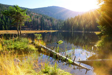 Moraine lake Kleiner Arbersee in National park Bavarian forest. Autumn landscape in Germany.