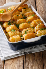 Homemade Baked Tater Tots with cheese, meat and greens close up in a dish baking dish. vertical