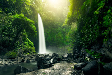 Beautiful big waterfall in green forest. Nature landscape background