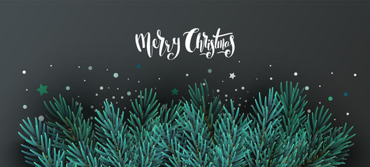 Christmas banner with text and fir tree branches